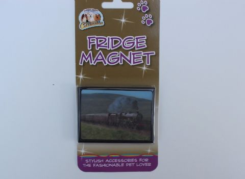 Steam Train fridge magnet